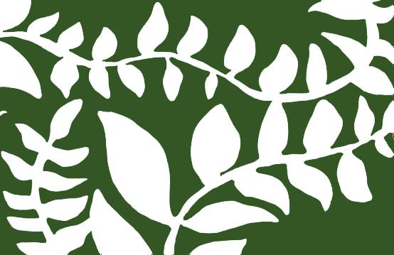 ecologische groene uitvaart begrafenis Gent